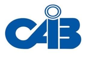CAIB Logo2