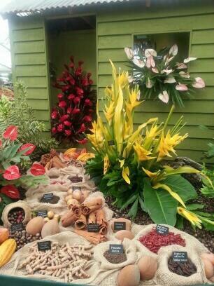 Grenada at 2014 RHS Chelsea Flower Show