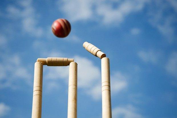 """""""Cricket""""的图片搜索结果"""