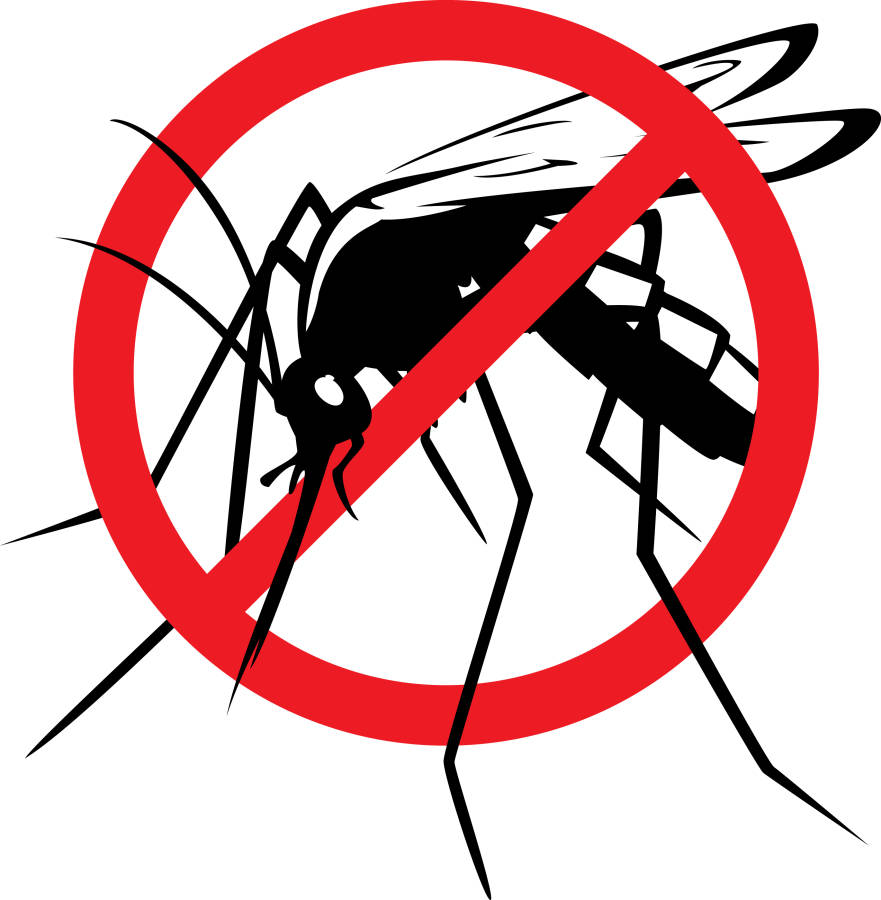 no mosquito zone