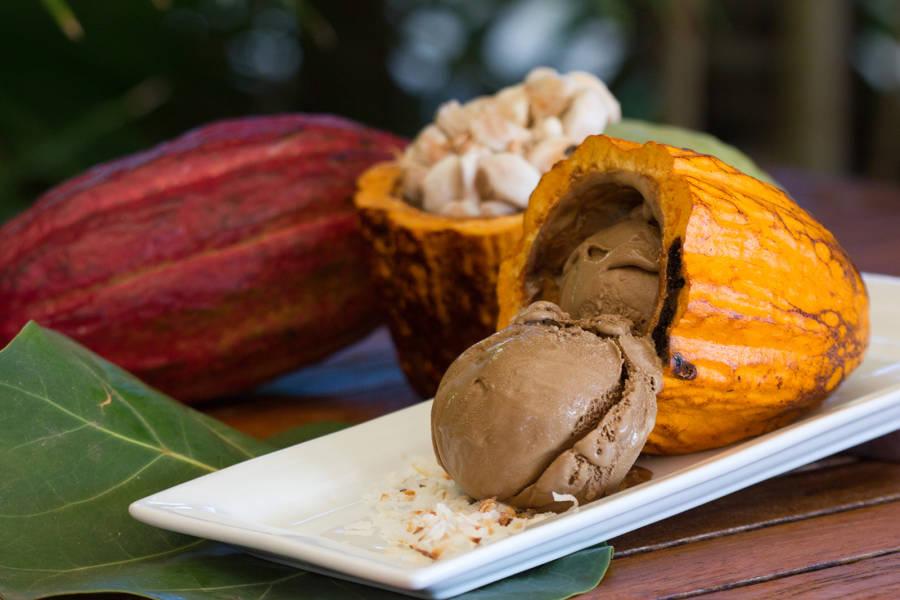 Grenada Chocolate Fest 2