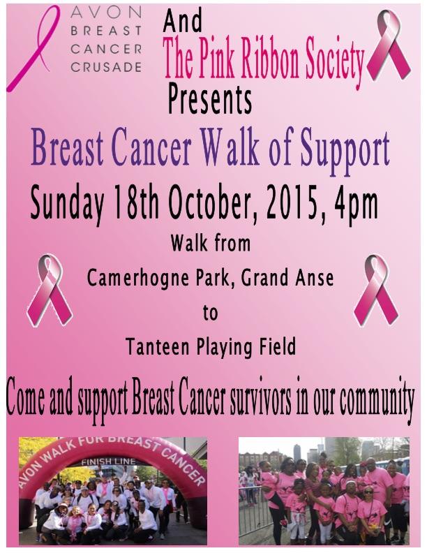 AVON breast cancer walk poster