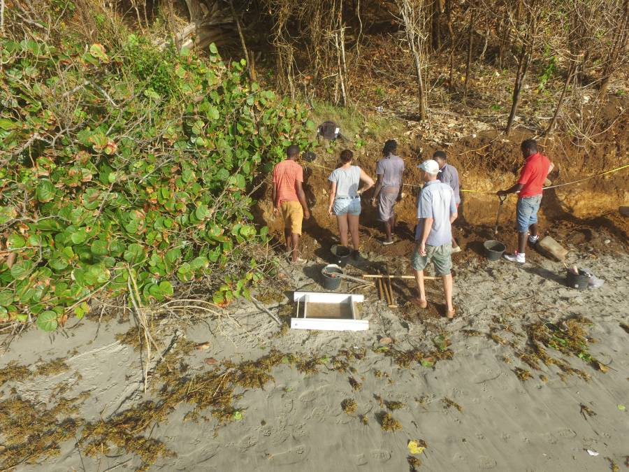 Excavating along the coastline where coastal erosion has led to a loss of Amerindian heritage