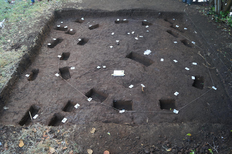 Test pit showing the remains of post holes and the outline of a Kalinago house