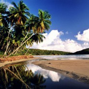 la-sagesse-bay-grenada-beach