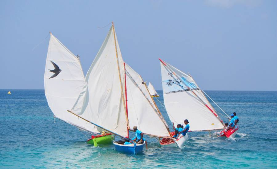 Grand Mal boat Swift in competitive racing at 2016 Westerhall White Jack Workboat Regatta