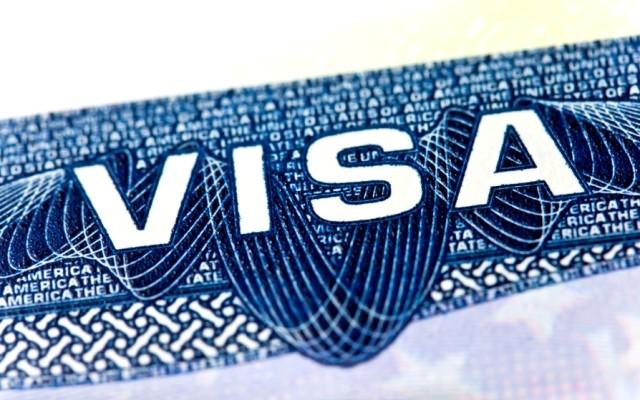 content visas general fraud