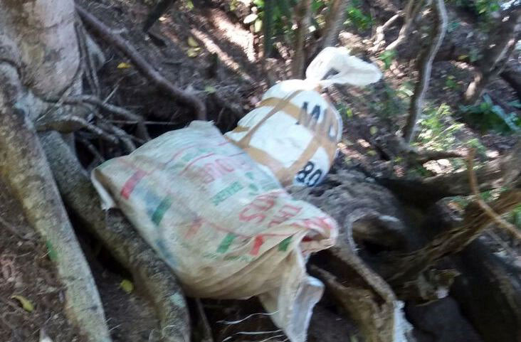 Marijuana recovered at the Anse La Roche Beach, Carriacou