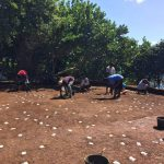 Amerindian Archaeology at La Poterie